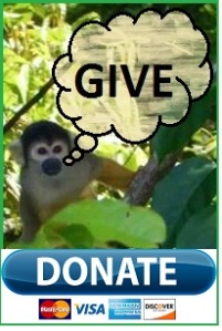 monkey-w-text-give-cropped-w-donate